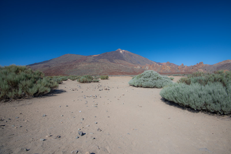 Canary Island-24.jpg