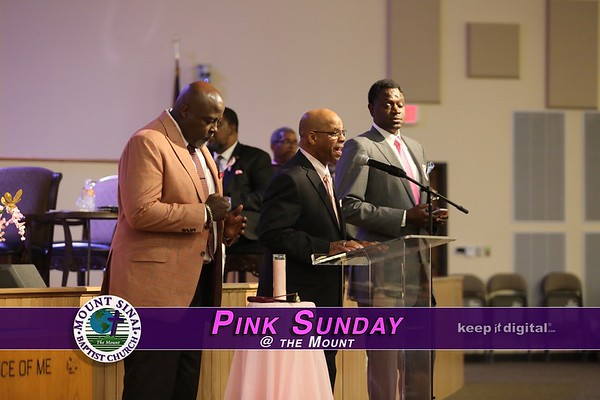 10_28_18 Pink Sunday at the Mount