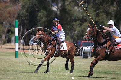 2009. POLO IN THE CITY-ADELAIDE