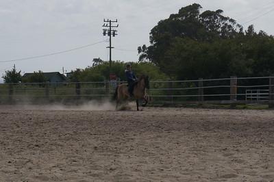Tamangur horses