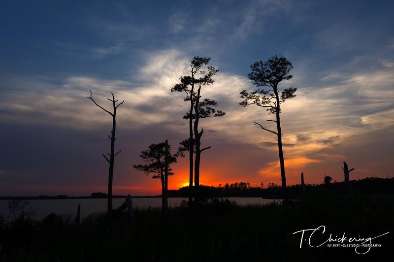 Blackwater Sunset Two-1558299176514.jpg