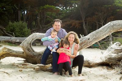The Veytser Family 2015