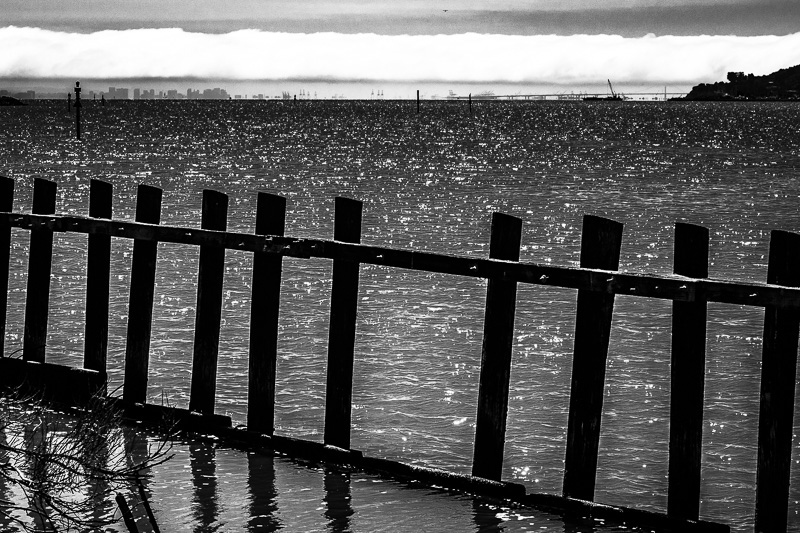 July 26 - Fog and a fence in water.jpg