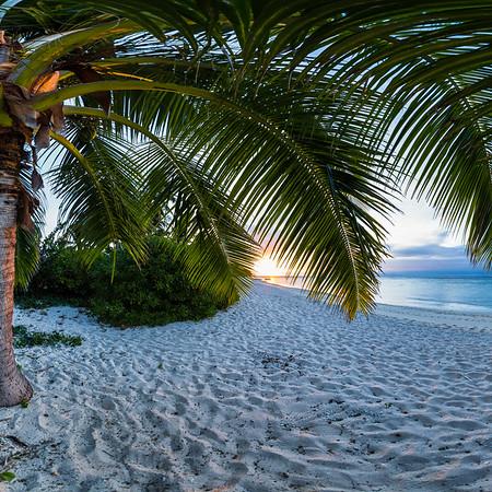 South Pacific Ocean Paradise