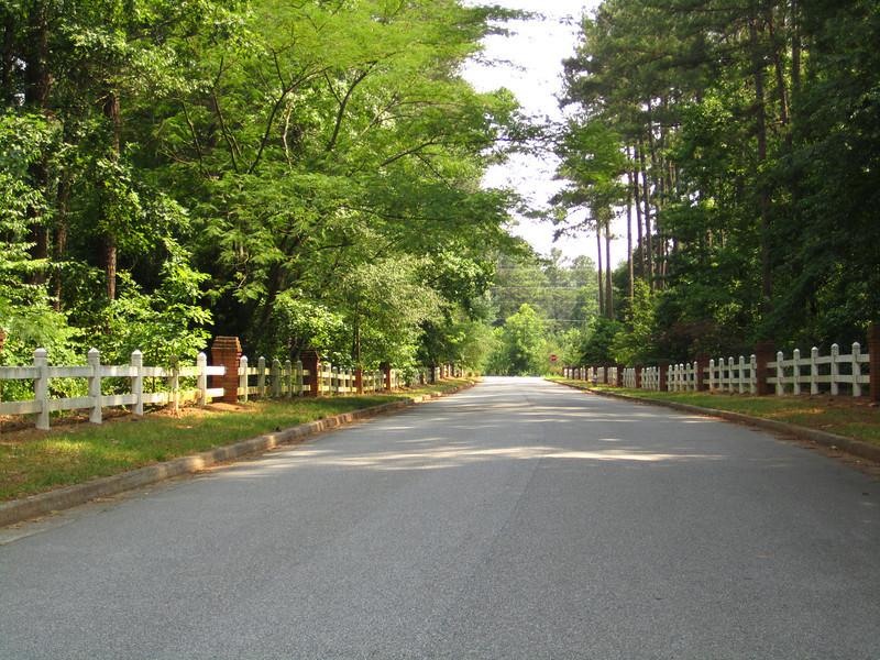Blue Ridge Plantation Off Thompson Rd Milton GA (30).JPG