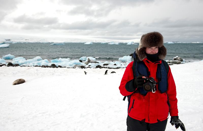 091204_penguin_island_8379.jpg