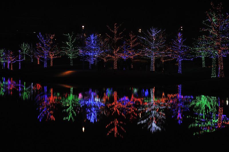 Christmas2019-841.JPG