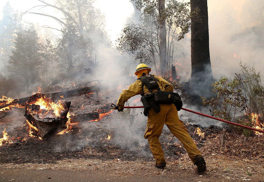 . GROVELAND, CA - AUGUST 21:  A firefighter from Ebbetts Pass Fire District uses a hose to cool down hot spots while battling the Rim Fire on August 21, 2013 in Groveland, California. The Rim Fire continues to burn out of control and threatens 2,500 homes outside of Yosemite National Park. Over 400 firefighters are battling the blaze that is only 5 percent contained.  (Photo by Justin Sullivan/Getty Images)
