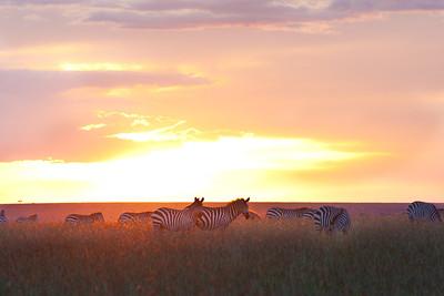 Glimpses of Kenya