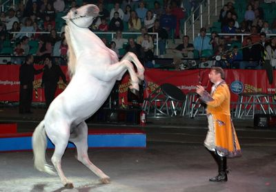 Greatest Show on Earth 2005