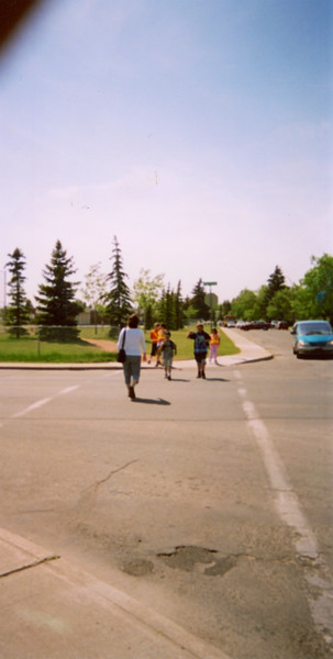 03-06 Summer Anna School - Long border pics
