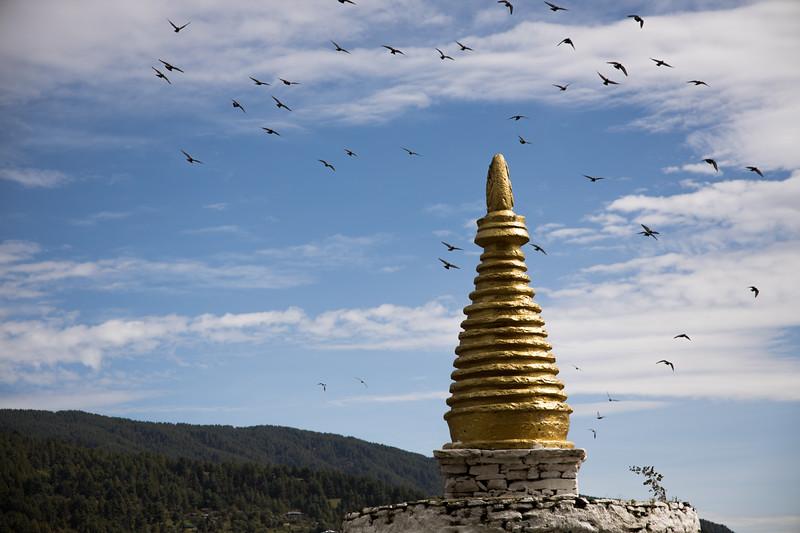 Bhutan (283).jpg