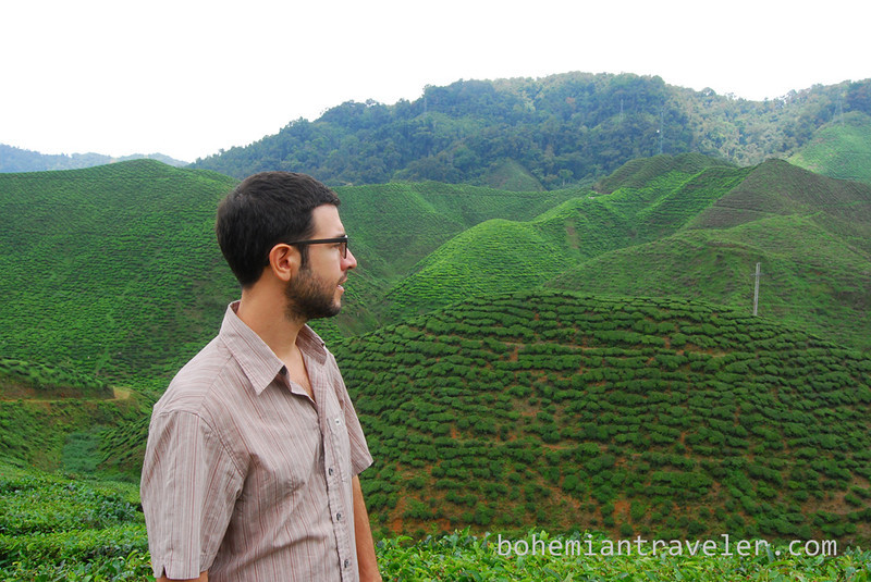 Stephen at Cameron Valley Tea fields [Bharat].jpg