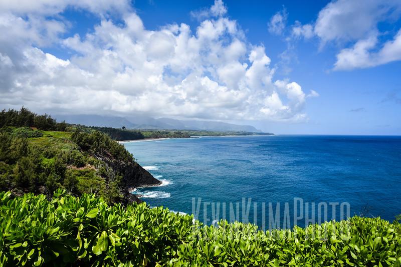 Kauai2017-240.jpg