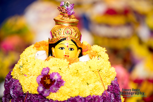 TDF Washington DC Bathukamma Celebrations -2016