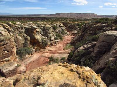 San Ysidro Trials Area Hike  4-26-20