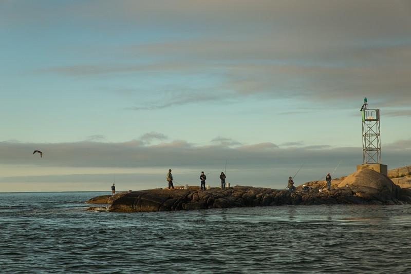 flyfishingnewengland.westportfall15-10.jpg