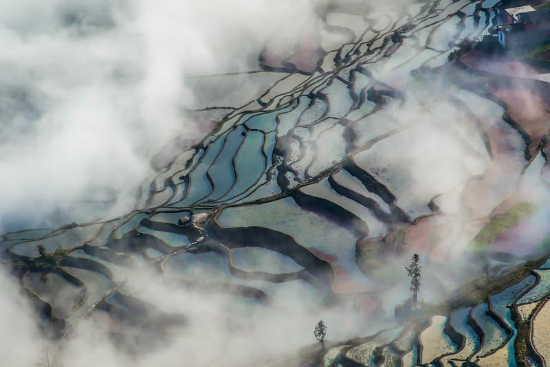 Yuanyang-6.jpg