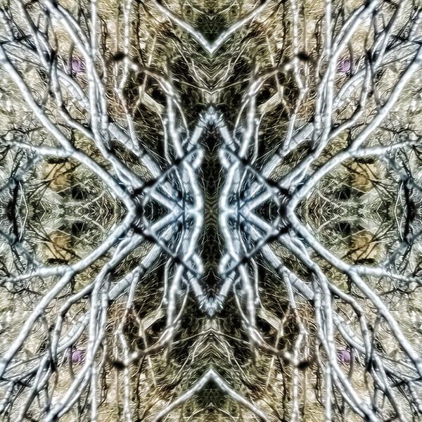 Mirror16-0023 16x16.jpg
