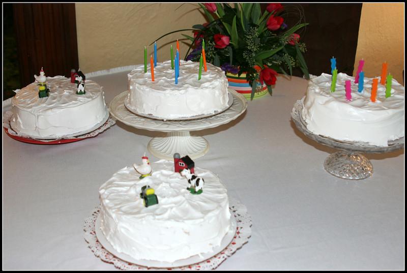 2012.4.21 Birthday Party.58.jpg