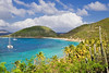 Beautiful view of lush green mountainside of the British Virgin Islands.