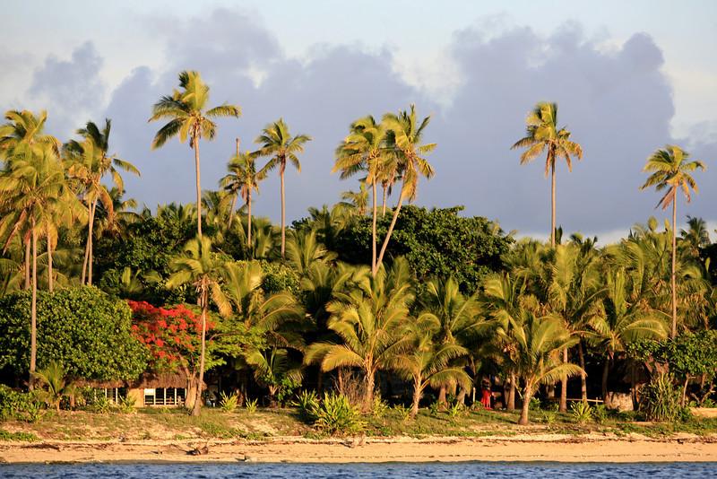 Fiji Camp