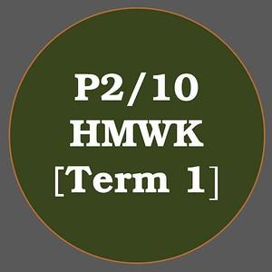 P2/10 HMWK T1