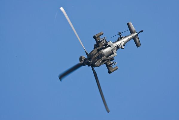 Army Air Corp , Blue eagles