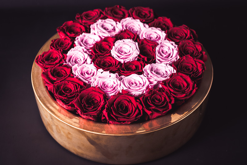 Rose Inspired (2nd Day)-.jpg