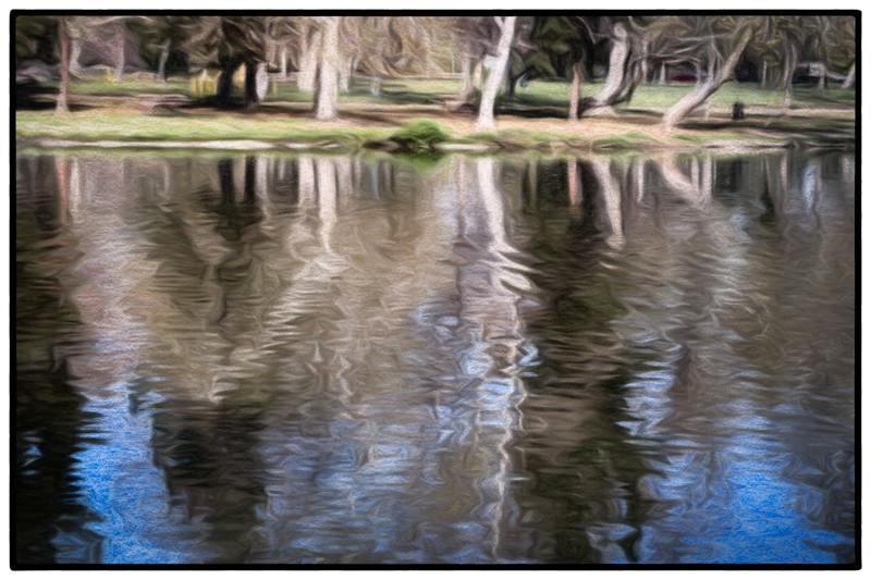 February 20 - Whittier Narrows, Whittier, CA-1.jpg