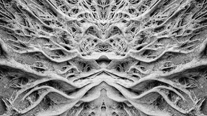 jawsnap_textures-patterns-.jpg