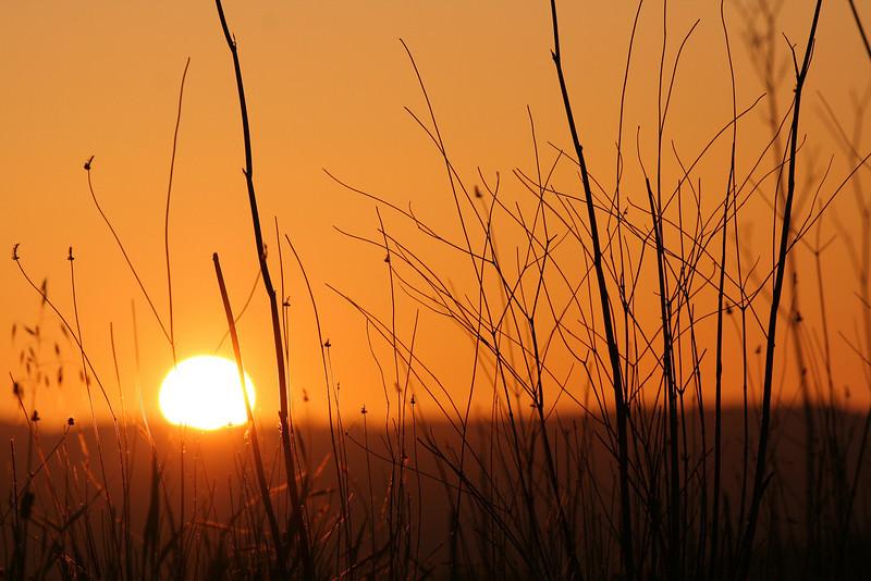 Sunrise over Castro Valley, CA