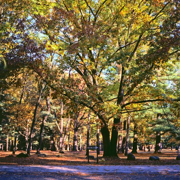 Autumn Hike 120 Film-00014.jpg