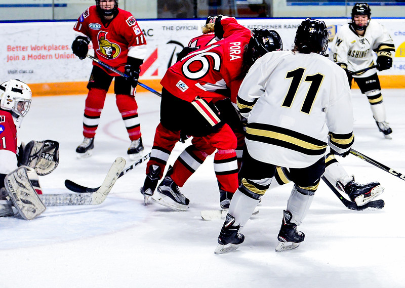 EHB_Kitchener_JrSenators-36.jpg