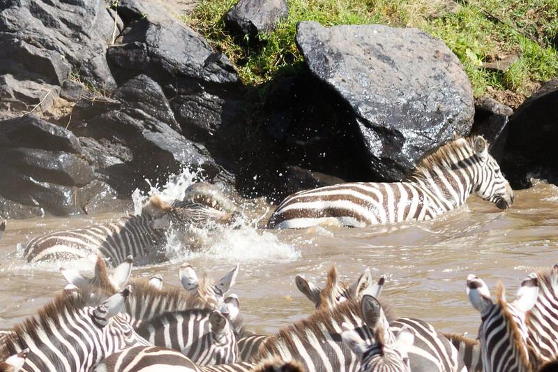 Kenya 2015-02642.jpg