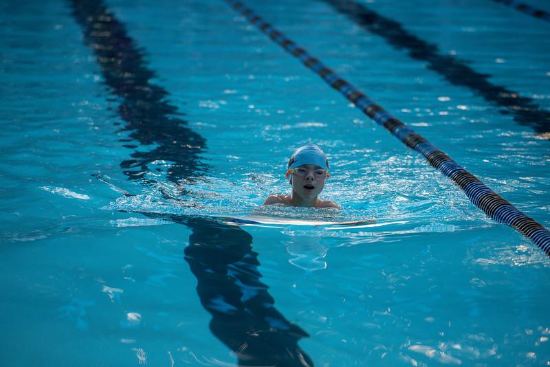 lcs_swimming_kevkramerphoto-628.jpg
