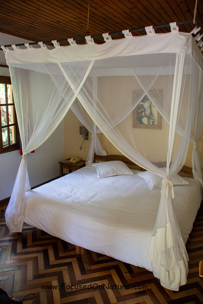 Our Room at Vakona