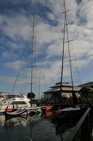 NZ - Auckland