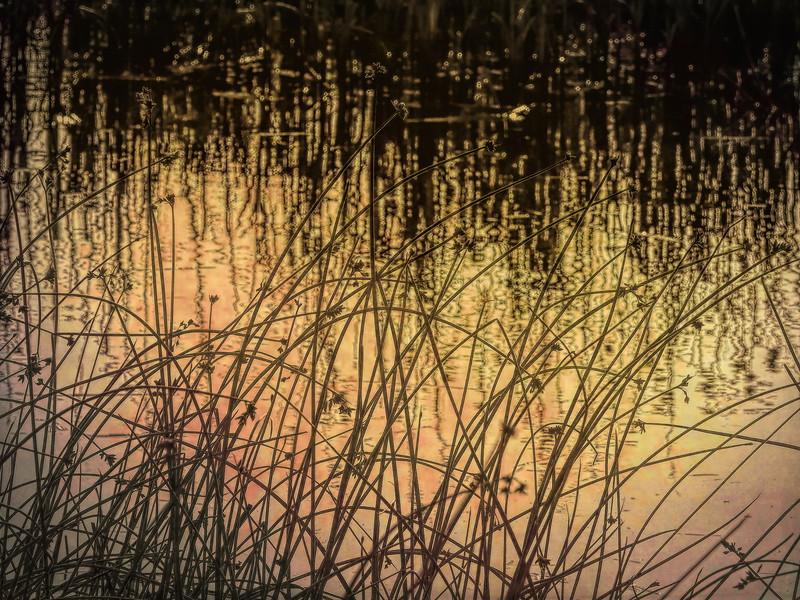 Windy Cold Day Edmonds-9-1-grunge-studio.jpg