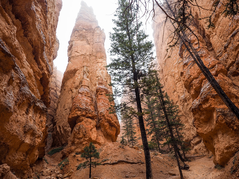 Hiking in Bryce Canyon National Park