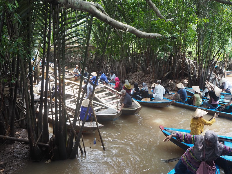 Things to do in Vietnam-Visiting Mekong Delta
