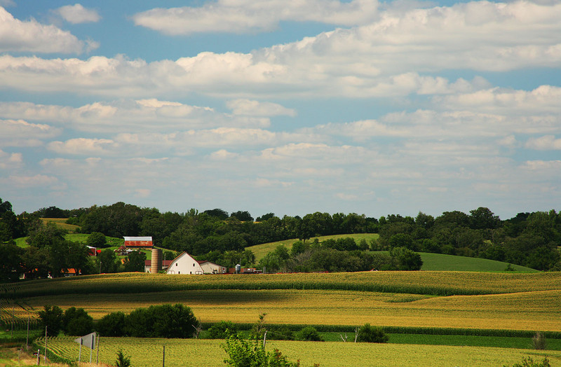 Illinois farmlands 1
