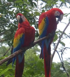 2012 11 02 Honduras