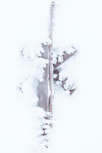 Levi, Frozen Snowmobile sign