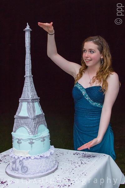 Elena's Sweet 16 Cake