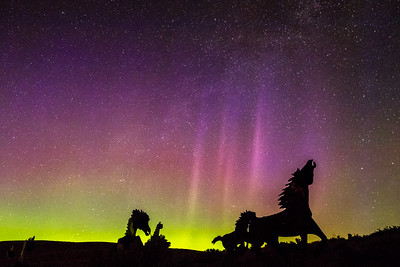 Astrophotography & Auroras