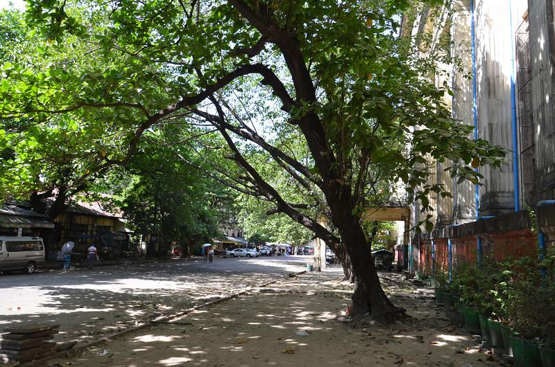 DSC_3558-bank-street.JPG