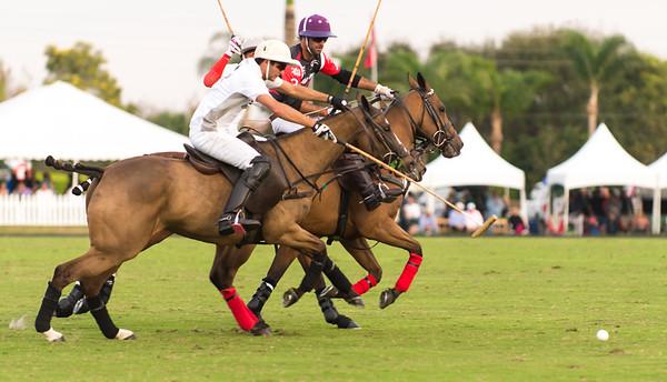 Polo Season 2015