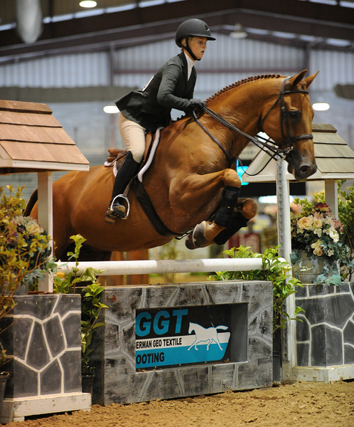 Horse show (59).jpg