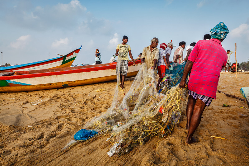 CHENNAI, INDIA - FEBRUARY 10, 2013: Indian fishermen dragging fishing net with their catch from sea on Marina Beach, Chennai, Tamil Nadu
